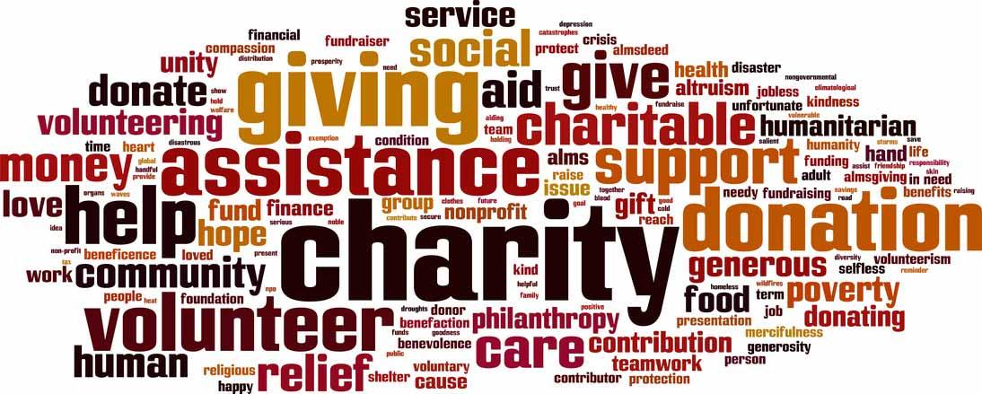 Free Premium Surveys For Nonprofit Organizations And Ngos